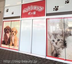 ペットショップ 犬の家 イオン上田店