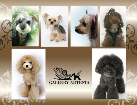 GALLERY ARTESTA -private-