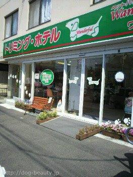 ペットハウス ワンダフル 流山店
